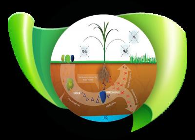 Fertilizers & environment