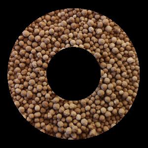 Fertilizer / amendment