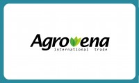Creare logo Agrovena