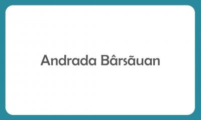 Colaborare Andrada Barsauan