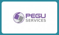 Colaborare Pegu Services