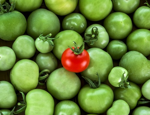 Fii roșia coaptă dintr-un coș de gogonele! Ce este branding-ul și cum te poate ajuta în afacere